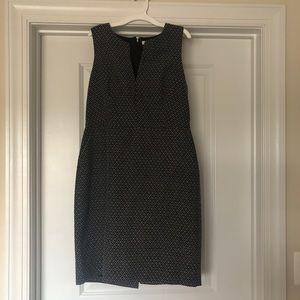 J. Crew Career Dress (10)